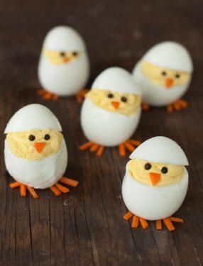 яичные цыплята