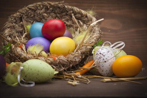 гнездышки с яйцами